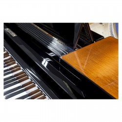 PIANO COLA BLUTHNER 185 NEGRO POLIESTER