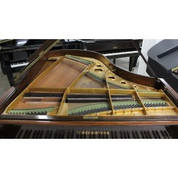 PIANO COLA C BECHSTEIN NOGAL SATINADO STILO